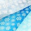 画像11: オーガンジーワンピース (アナユキ風SNOW柄) (11)