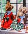 画像8: クリスマス赤ワンピース (8)