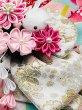 画像8: 犬服/猫服 晴れ着 友禅 手毬に桜橘 (水色) 振袖スタイル (8)