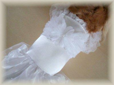 画像3: ウェディングドレス/パーティドレス